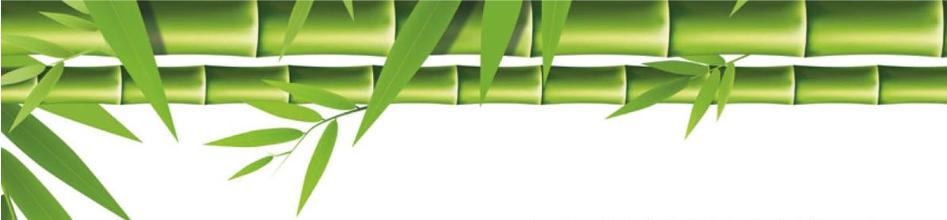 Boru-Bamboo